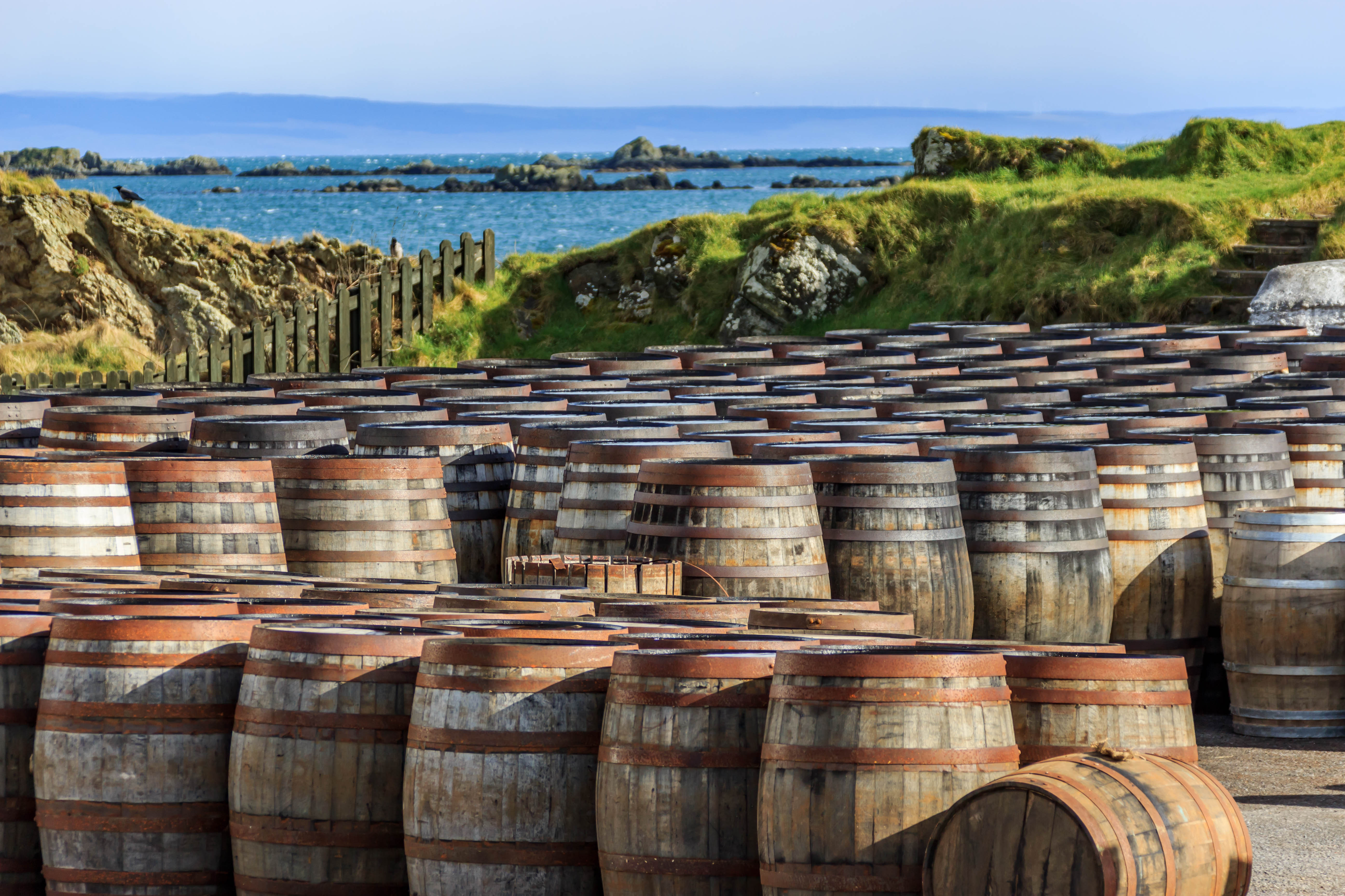 Scotch,Whisky,Barrels,Lined,Up,Seaside,On,The,Island,Of